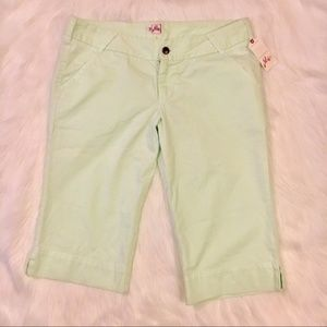 NEW Joie Mint bermuda shorts  size 30
